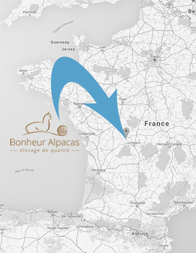 Alpaca breeders France